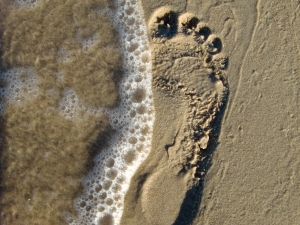 What Are Footprints in SEO